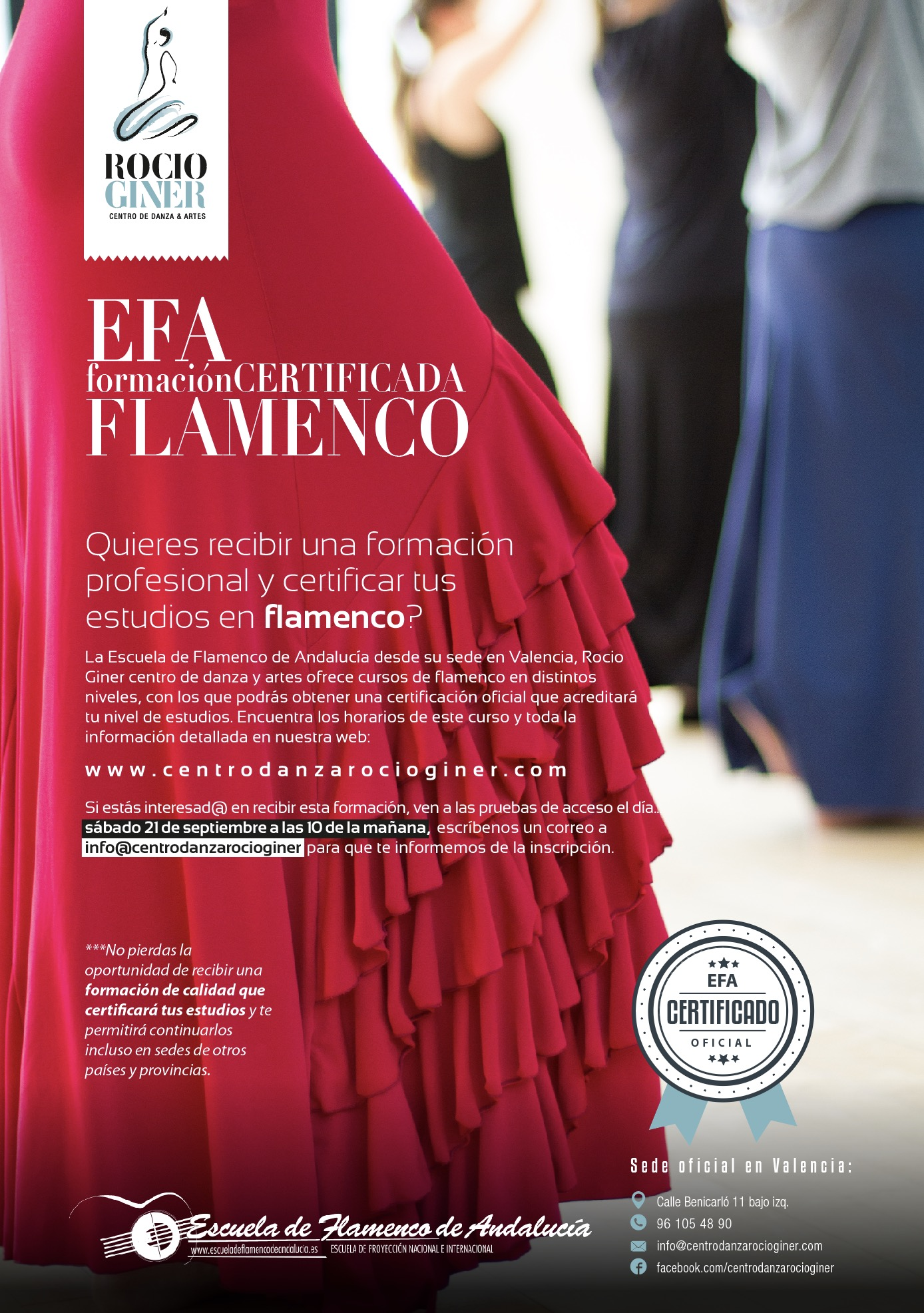 Flamenco EFA en Valencia